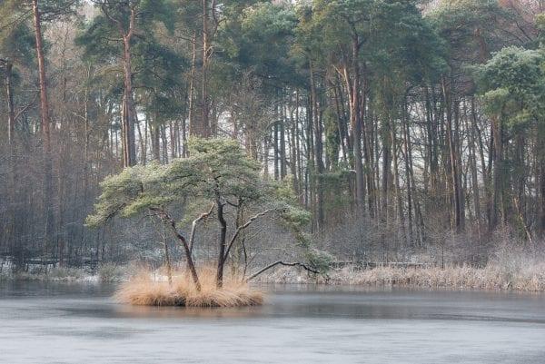 Soft focus landschapsfotografie foto's