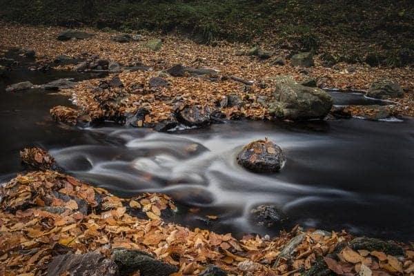 Een foto gemaakt tijdens de workshop landschapsfotografie Hoge Venen in de herfst