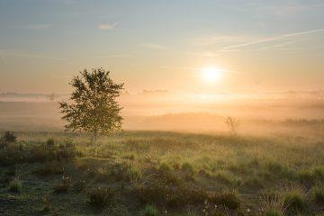 Prachtig landschapsfoto met ondergaande zon.
