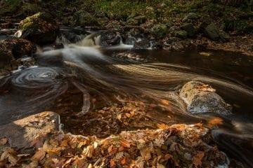 foto van de workshop landschapsfotografie Hoge Venen in de herfst