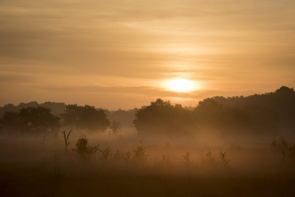 Mist kan ook na zonsopkomst worden gefotografeerd