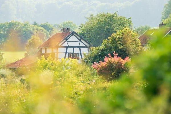 Een mooie dag in Zuid-Limburg