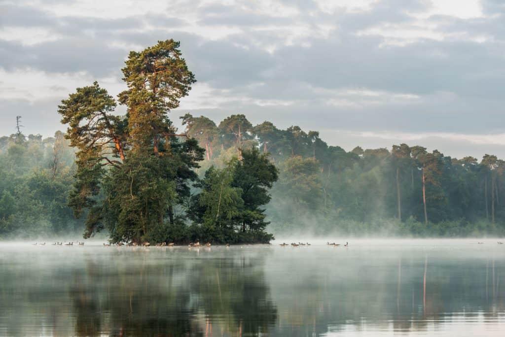 Fotograferen in de herfst levert mooie beelden op