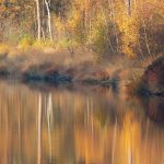 5 Effectieve tips voor herfstfotografie