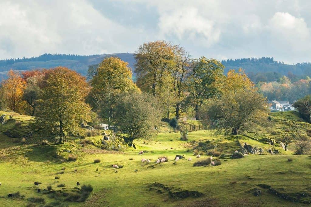 Ook in deze foto is het Landscape CPL polarisatiefilter gebruikt