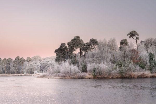 Prachtige afbeelding van een meer met een bos waarbij de automatische witbalans is gebruikt