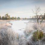 Technische tips voor natuurfotografie in de winter