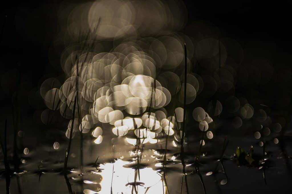 Afbeelding van een slootje in de avond met een mooi effect erin