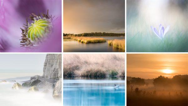 Voorbeelden voor natuurfotografie coaching | technische vaardigheden