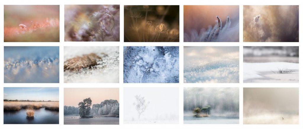 nog meer tips voor natuurfotografie: maak een panel rondom 1 thema.
