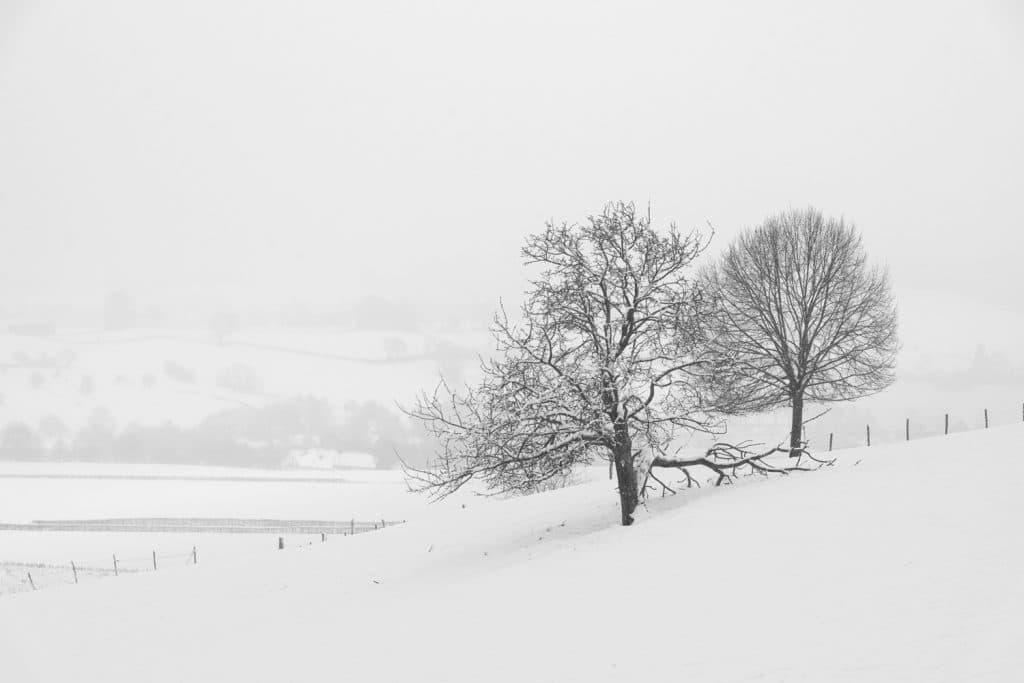 In deze foto is belichtignscompensatie toegepast, de sneeuw is weer wit.
