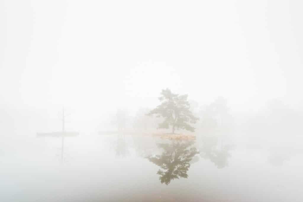 Mistige omstandigheden zijn geschikt voor high key fotografie