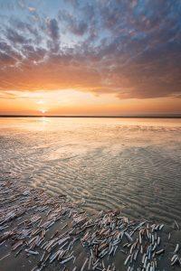 De zonsondergang in de Kwade Hoek op Goeree-Overflakkee